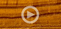 Koa Guitar Tonewood Review