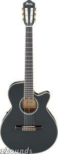Ibanez AEG10NE Classical Cutaway Acoustic-Electric Guitar
