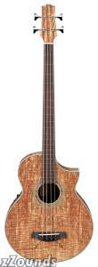 Ibanez EWB20SMFE Fretless Acoustic-Electric Bass