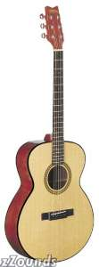Washburn F10S Solid Top Folk Body Acoustic Guitar