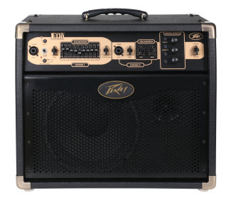 Peavey E110 Ecoustic