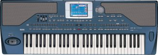 Korg Pa800 Keyboard