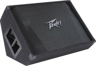 Peavey PV 15M Monitor