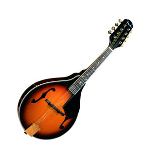 Fender FM53S Mandolin