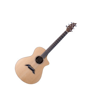 Breedlove American C25SSE