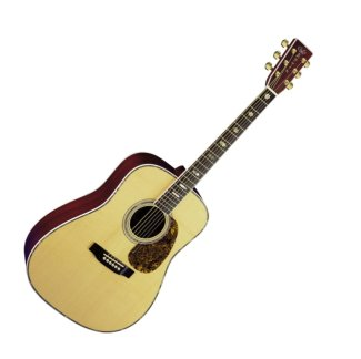 Martin D 41 Acoustic