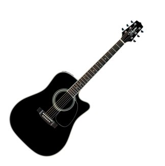 Takamine EF314SC Acoustic