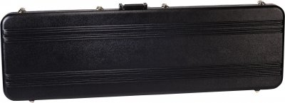 Peavey Bass Case