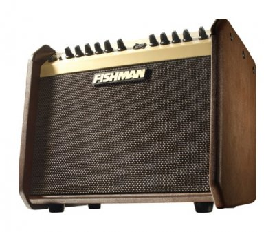 Fishman Loudbox Mini Amp