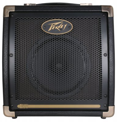 Peavey Ecoustic E20 Amp