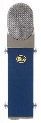 BLUE Blueberry Mic