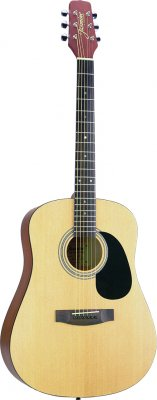 Jasmine by Takamine S35