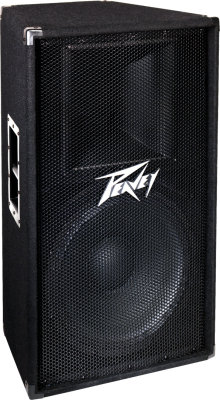 Peavey PV115 PA Speaker
