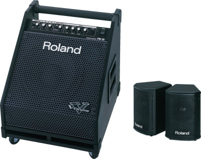 Roland PM-30 Monitor