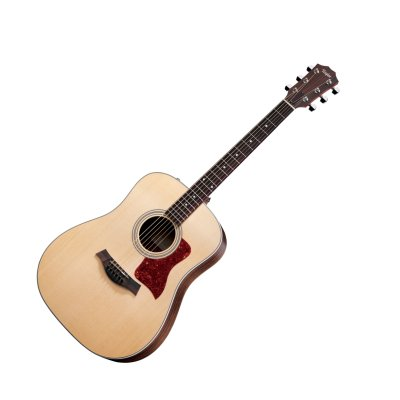 Taylor 210e Guitar
