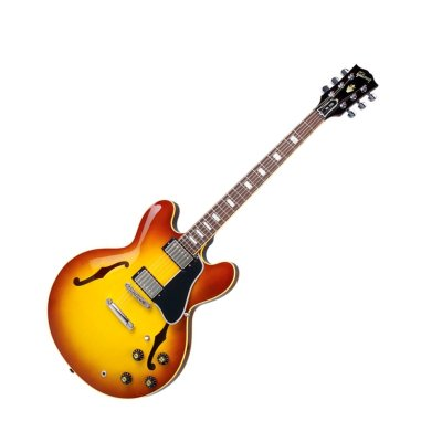 Gibson Larry Carlton