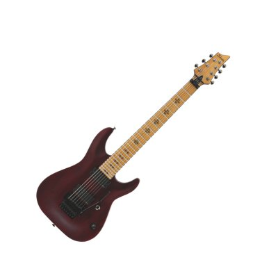 Schecter Loomis-7 FR
