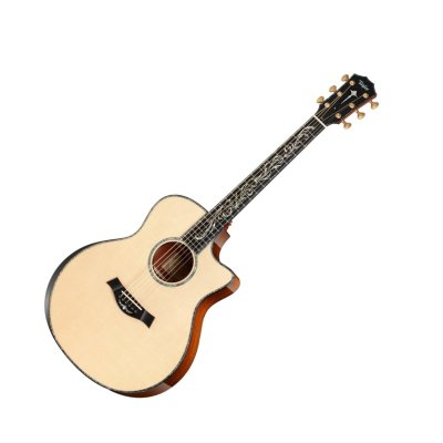 Taylor PS16ce GS Cutaway