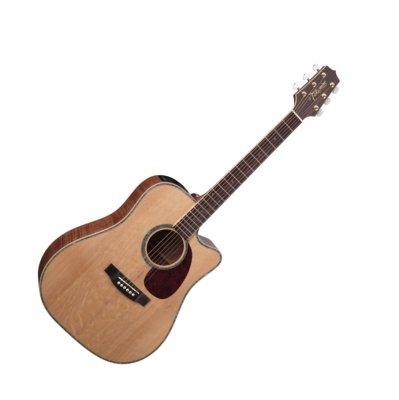 Takamine EG340DLX Guitar