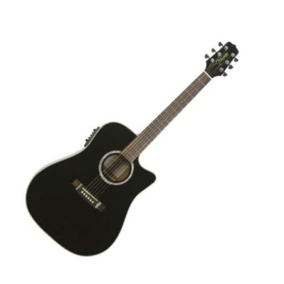 Takamine EG531SC Acoustic