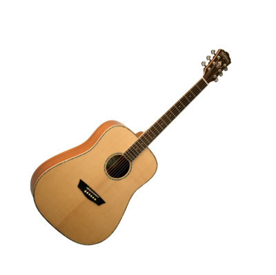 Washburn WD-15S Acoustic